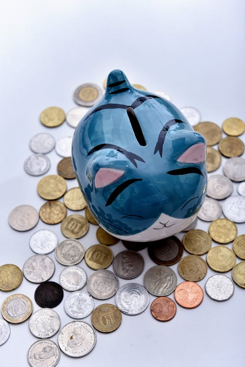 A Cute Cat Piggy Bank in the Middle of Coins