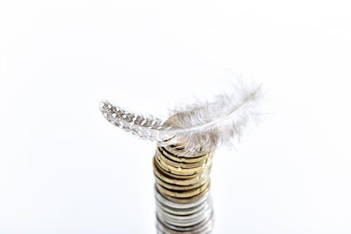 Foto profissional grátis de alteração, conhecimento, dinheiro