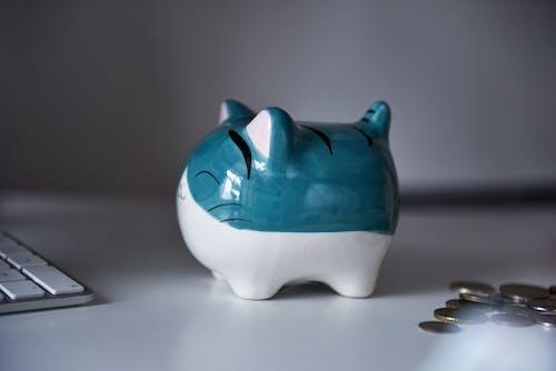 A Cute Cat Piggy Bank