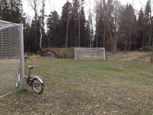 Kostnadsfri bild av cykel, gräs, mål, träd