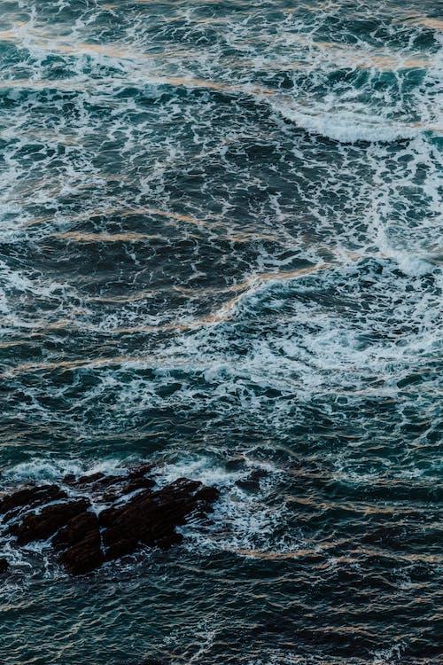 Ảnh lưu trữ miễn phí về bão táp, bề mặt trái đất, biển, bờ biển