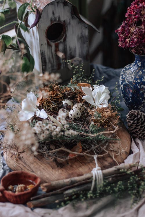 High angle of various decorations on table with nest with eggs near birdhouse and flowers in vase near bump and twigs with plants on wooden board in light place