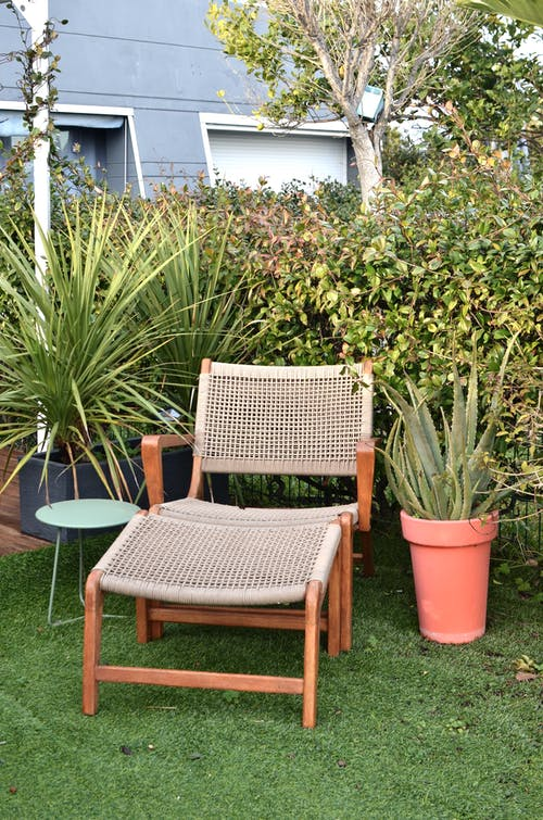 Sun lounger placed in garden with lush exotic plants