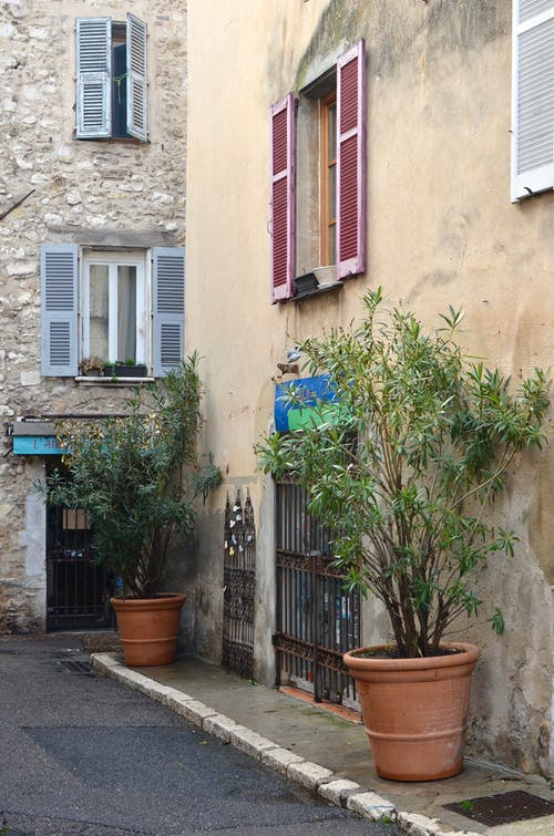 Potted trees placed on narrow sidewalk near small old weathered residential building in old city district