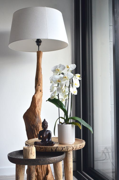 Elegant white potted orchid flowers placed on small wooden table with Buddha statuette and candle near creative lamp in modern apartment
