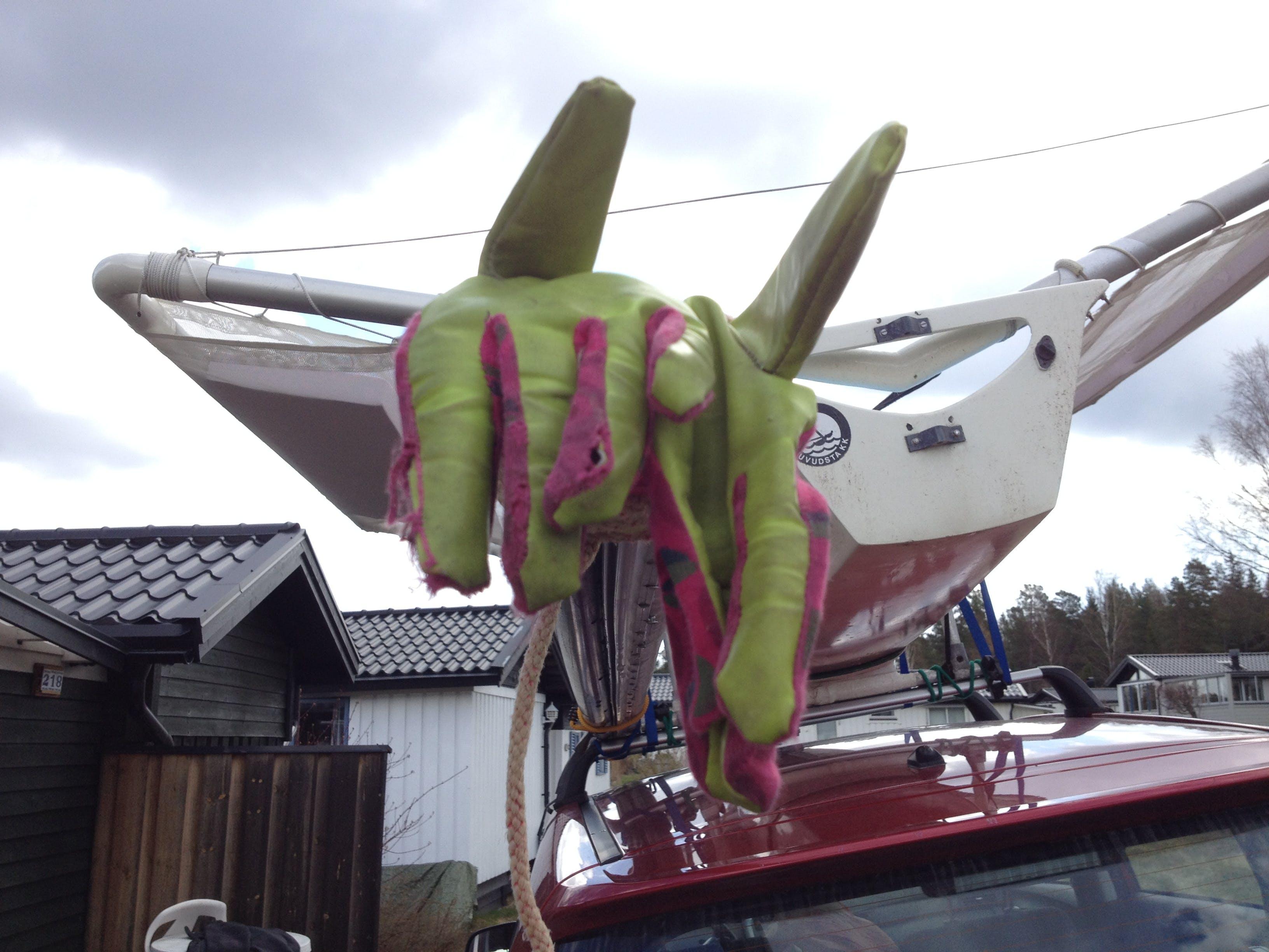 Free stock photo of sailing, moth, glove