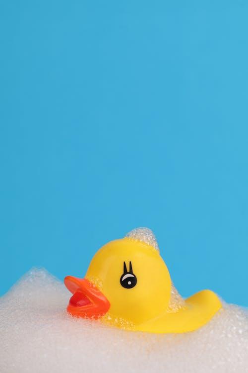Fotos de stock gratuitas de agua, al aire libre, bajo el agua, bañera