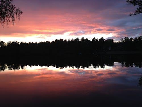 Immagine gratuita di acqua, riflessi, tramonto, treeline