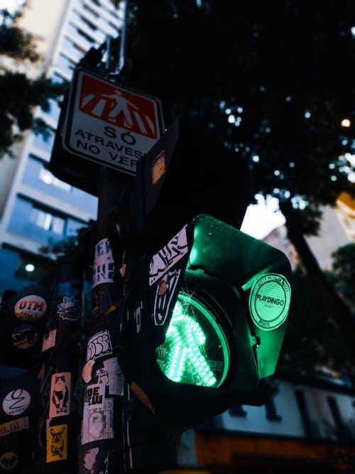 Ingyenes stockfotó fény, könnyű, zöld témában