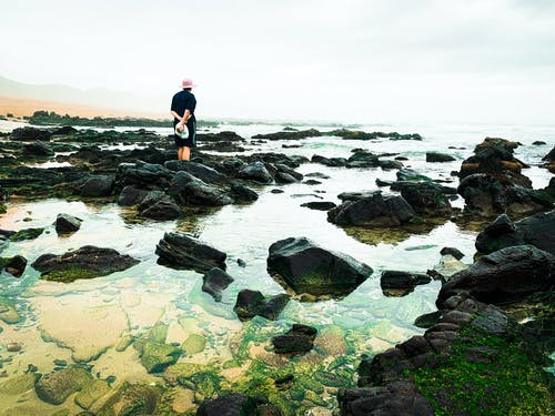 Back view of unrecognizable person in casual clothes and hat standing on rough stone on rocky coast in nature in daytime