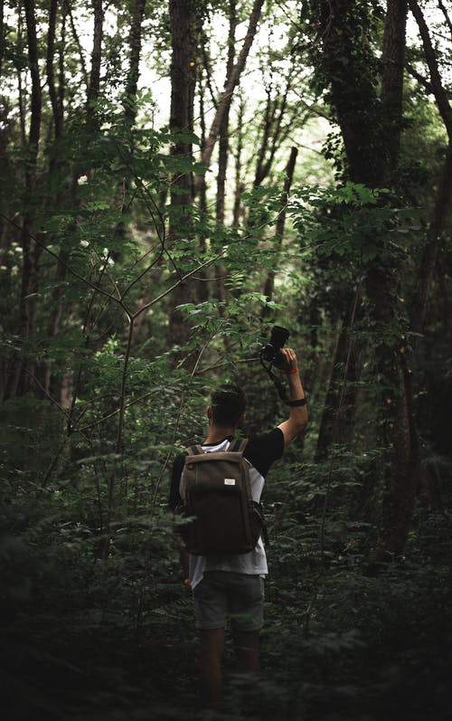 Man in Black and White Backpack Standing in Forest