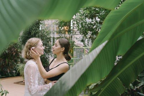 คลังภาพถ่ายฟรี ของ LGBT, lgbtiq, lgtb