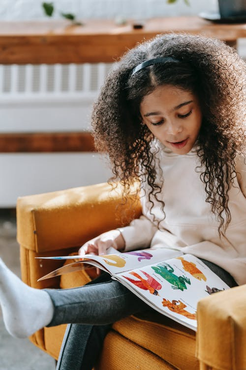 Black smart girl studying bright pictures of book