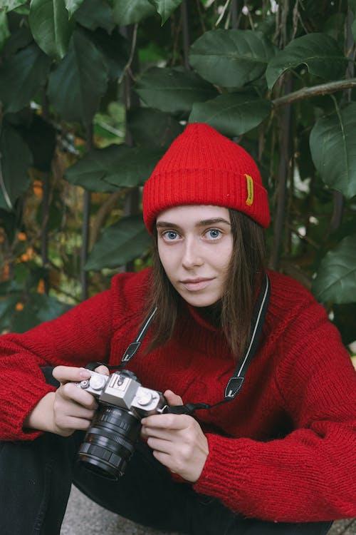 คลังภาพถ่ายฟรี ของ กล้อง, กลางวัน, กลางแจ้ง