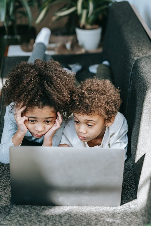 Focused African American siblings lying on couch and looking at screen of netbook while browsing internet in light room with flowerpots at home