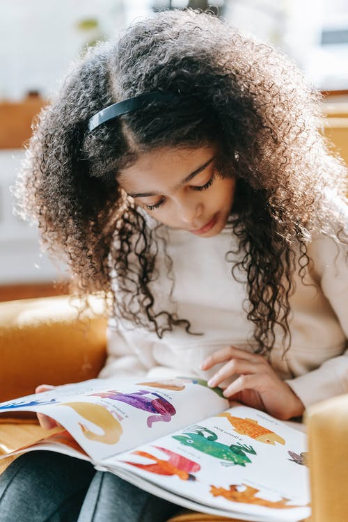 Focused black child studying colorful pictures in book at home