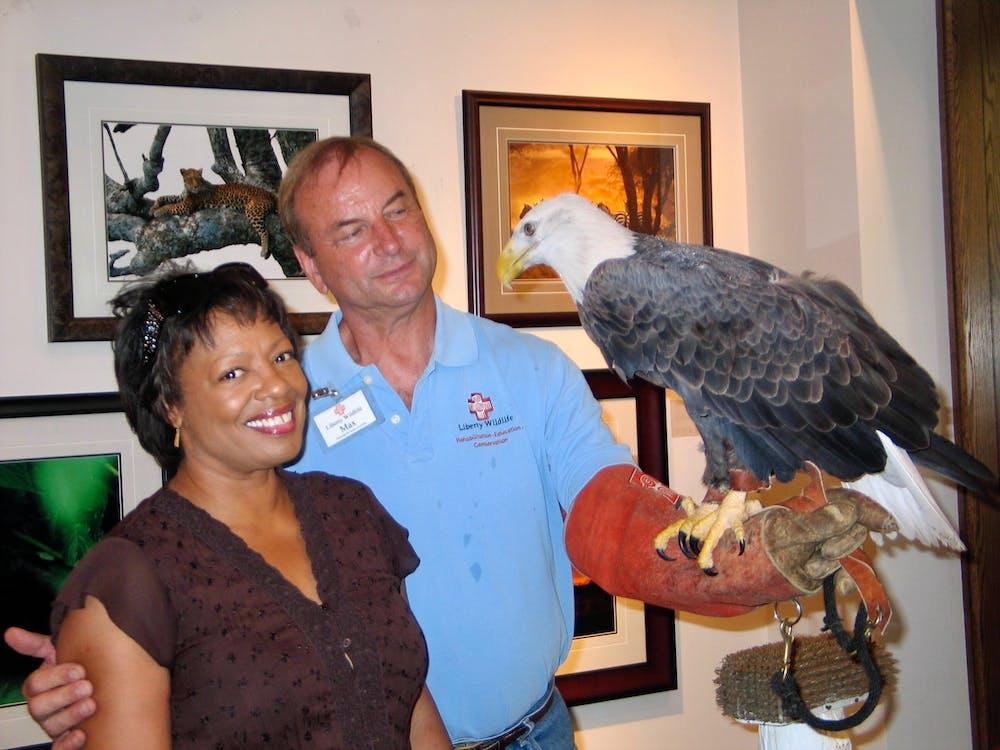 Foto profissional grátis de águia da liberdade