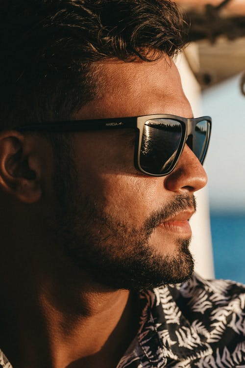 Side view of crop male with beard in fashionable sunglasses looking away on blurred background