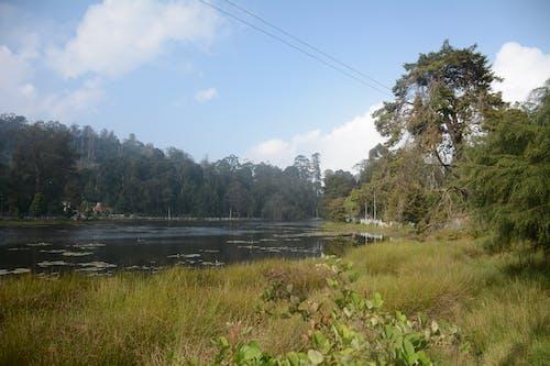 Foto d'estoc gratuïta de fotografia de natura, fotografia de paisatge, Índia