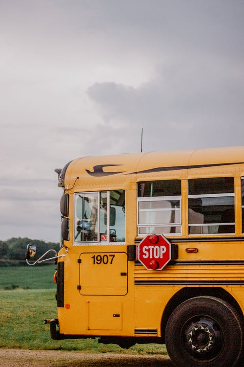 Free stock photo of action, attending school, back to school