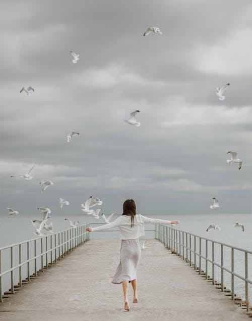 Mujer En Camisa Blanca De Manga Larga Y Pantalón Blanco Caminando Sobre Un Muelle De Madera Con Pájaros En Con En Con En