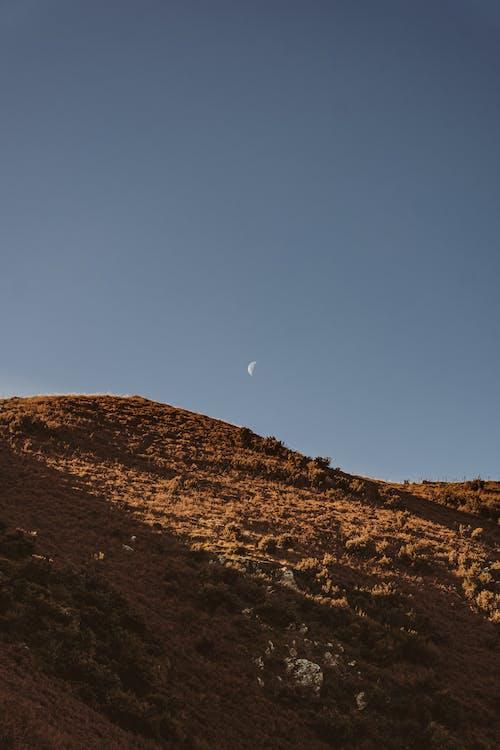 ドライ, 乾燥, 半月の無料の写真素材