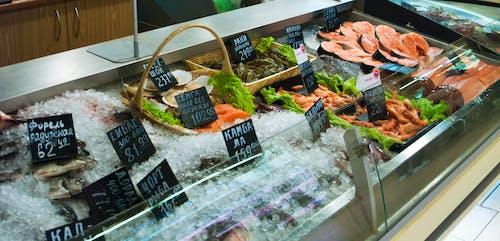 Бесплатное стоковое фото с рыба, рыбный рынок, рыбы