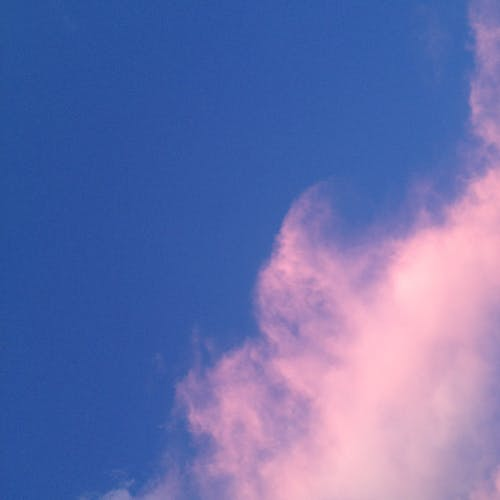 Free stock photo of pink clouds