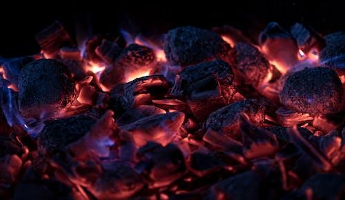 Close Up Photo of Burning Firewood