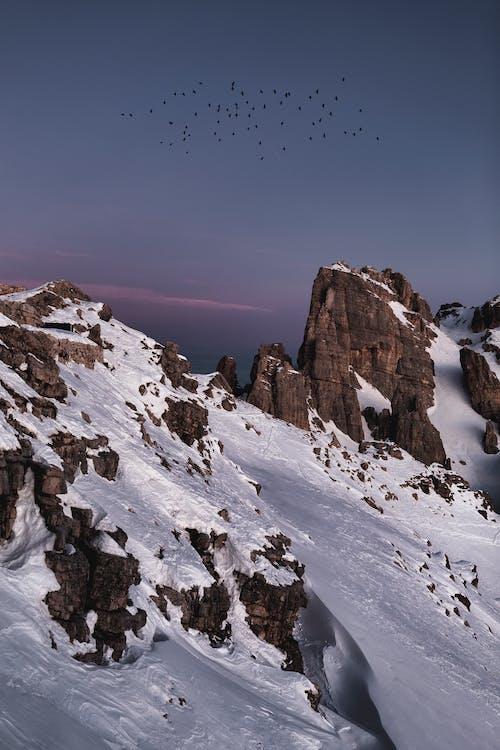 Foto d'estoc gratuïta de a l'aire lliure, alba, alpinista