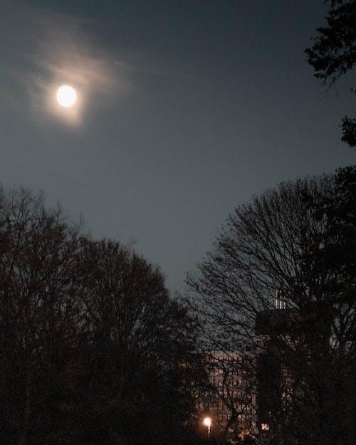Fotos de stock gratuitas de Luna llena