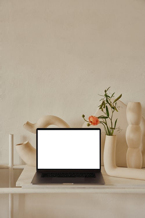 Netbook with white screen placed on shelf near uneven curved ceramic vases with flowers with green leaves near pipes in light room with white wall