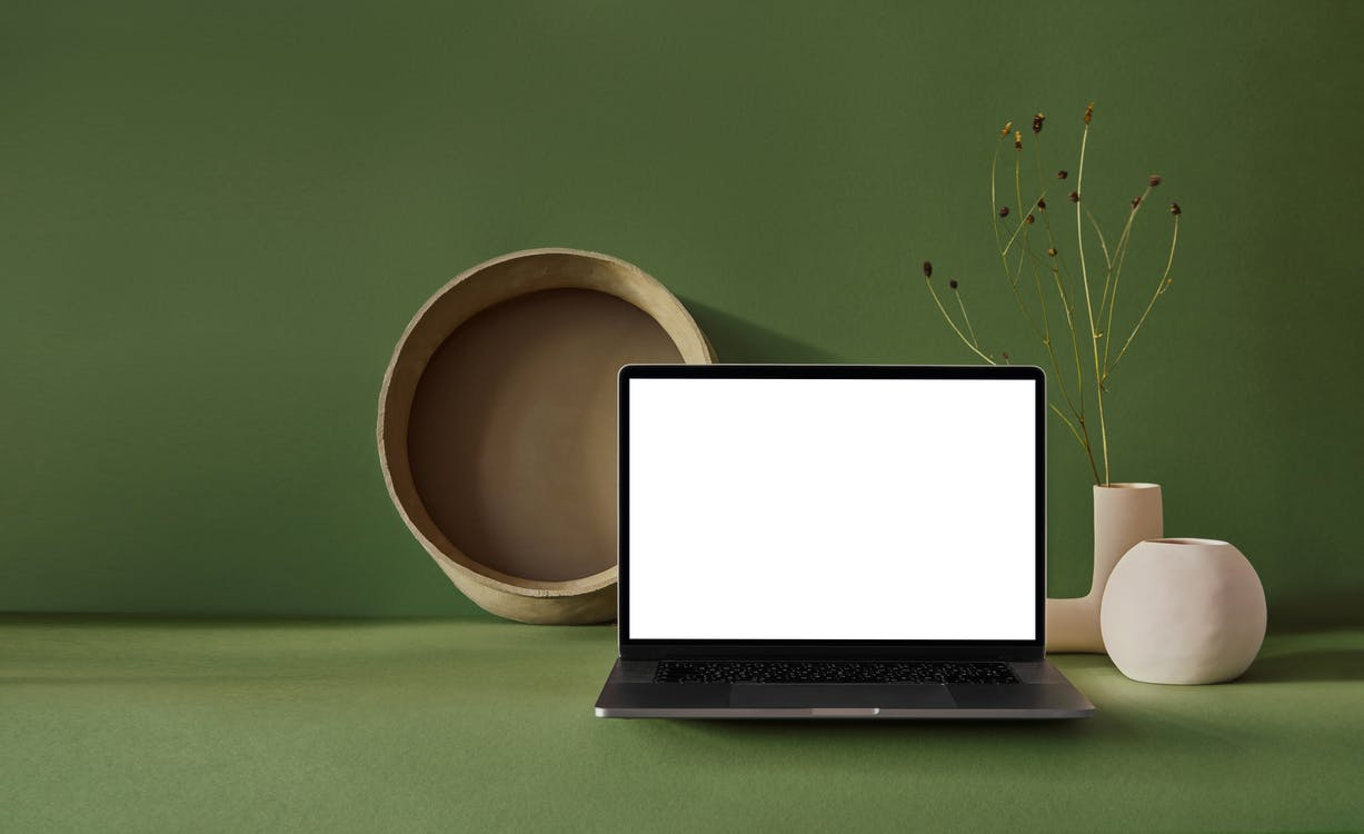 Composition of portable netbook with empty screen placed near dry plant in vase with basket