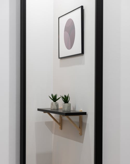 Interior of light apartment with shelf with small potted green plants near painting on white wall