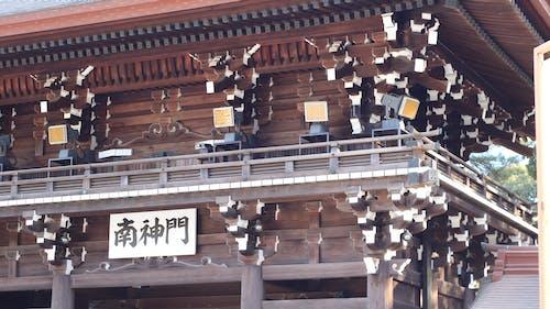 Free stock photo of shibuya