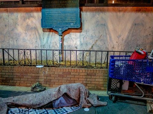 Free stock photo of homeless, homelessness