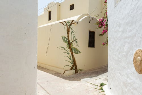 Old stone decorated house with geometric architecture located on sunny street with blooming tree and passage with white concrete wall