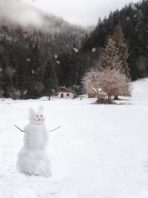 White Snowman on Snow Covered Ground Near Brown Trees