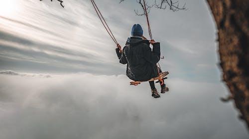 Fotos de stock gratuitas de arboles, árboles forestales, balanceándose