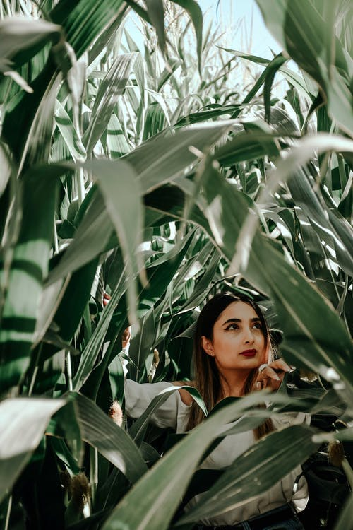 Woman in Gray Jacket Standing Beside Green Plant