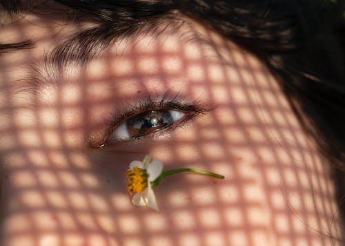 Ilmainen kuvapankkikuva tunnisteilla aurinko, glamour, hiukset, hius