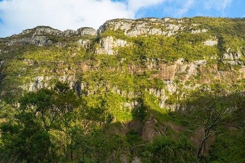 Základová fotografie zdarma na téma brazílie, cachoeira, cestování