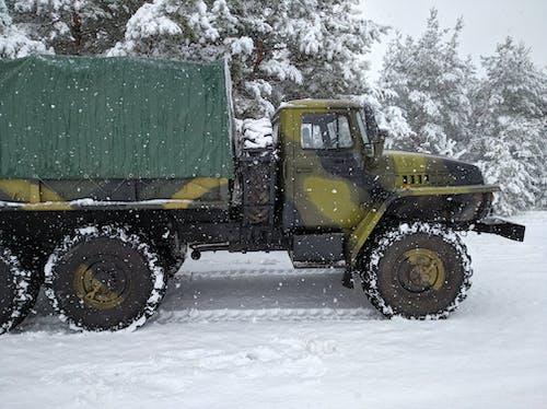Fotos de stock gratuitas de arboles, camión, invierno
