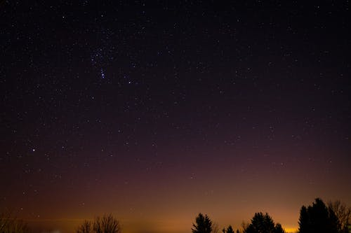 Scenic View of a Starry Night Sky