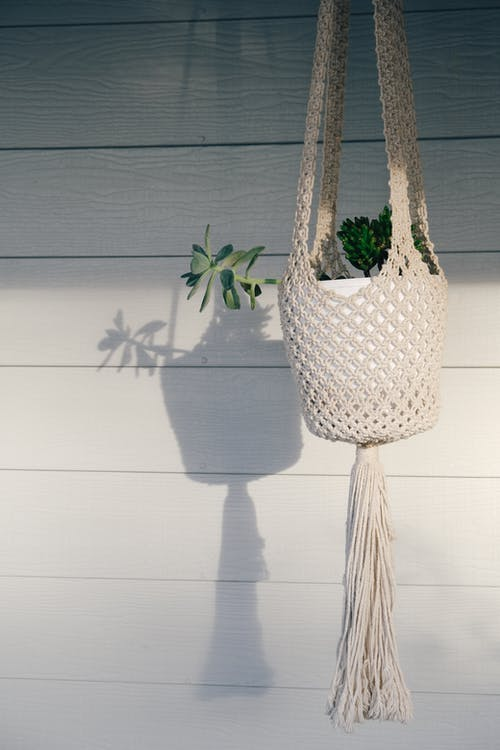 White Wicker Basket With Green Plant