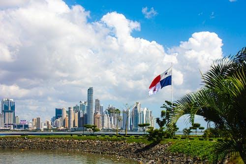 Foto stok gratis bendera, caribe, cityscape