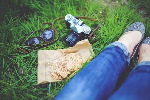 Kostnadsfri bild av flicka, fotograf, fotografi, gräs