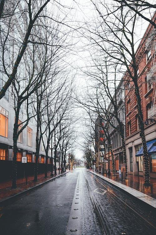Asphalt road between old building in city