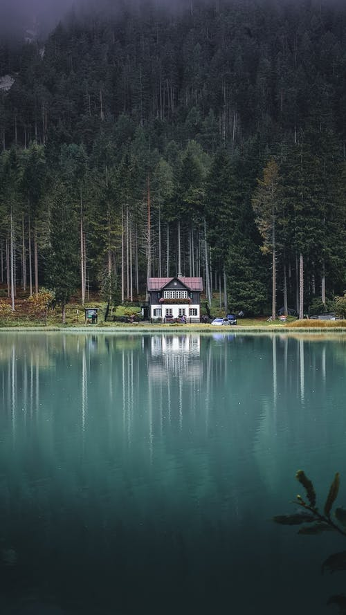 Picturesque view of small remote cottage located on tranquil blue lake coast near thick coniferous woodland in peaceful nature