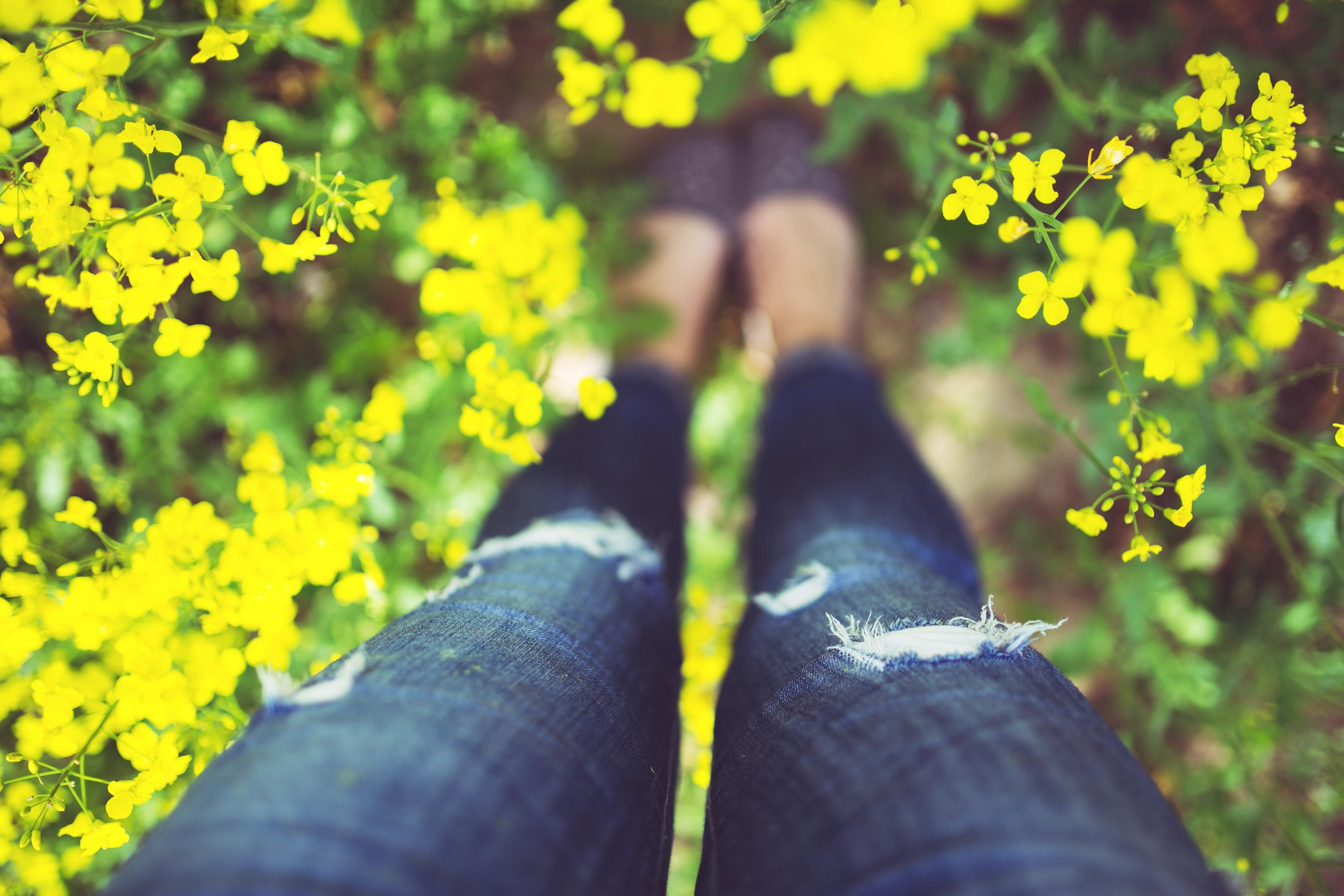Girl Standing In Yellow Flowers Free Stock Photo